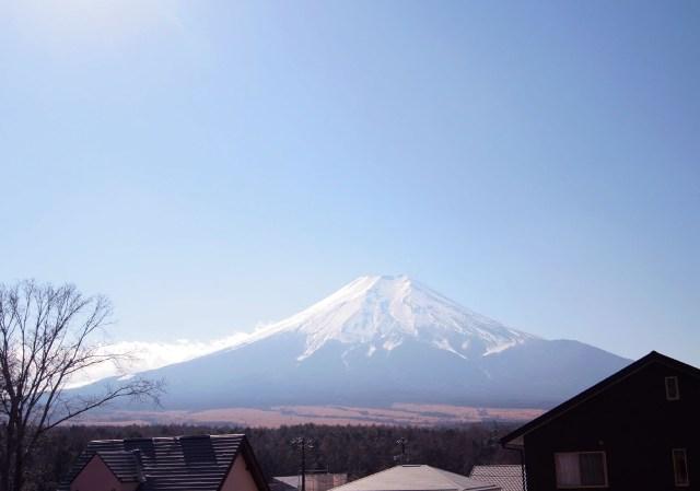 Fuji1web