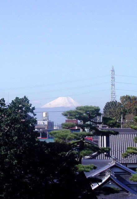 Fuji2web