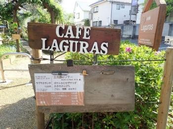 Laguras04web